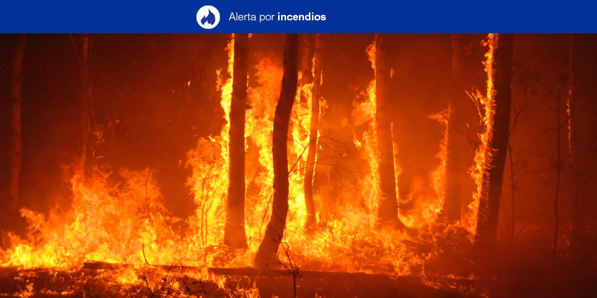 SITUACION DE ALERTA | Altas temperaturas en Canarias
