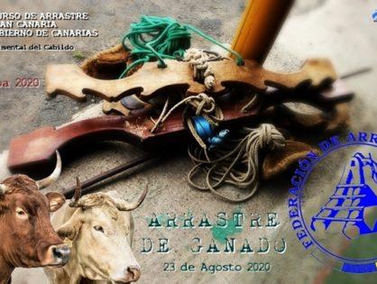XXIX CONCURSO DE ARRASTRE DE GANADO | Isla de Gran Canaria