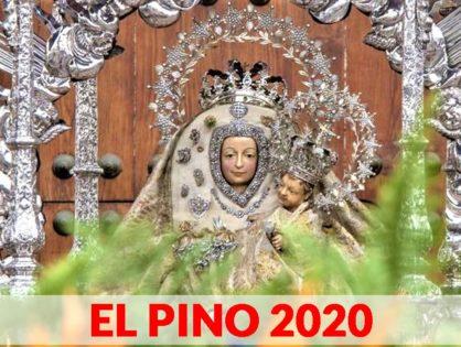 EL PINO 2020   Teror