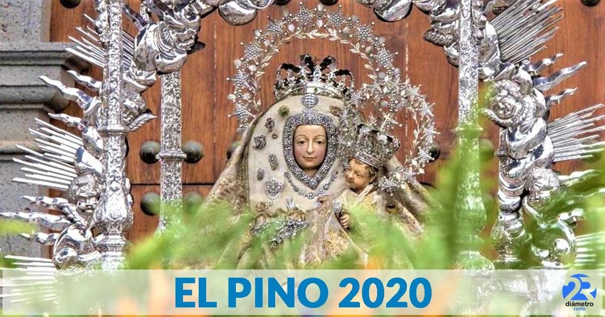EL PINO 2020 | Teror