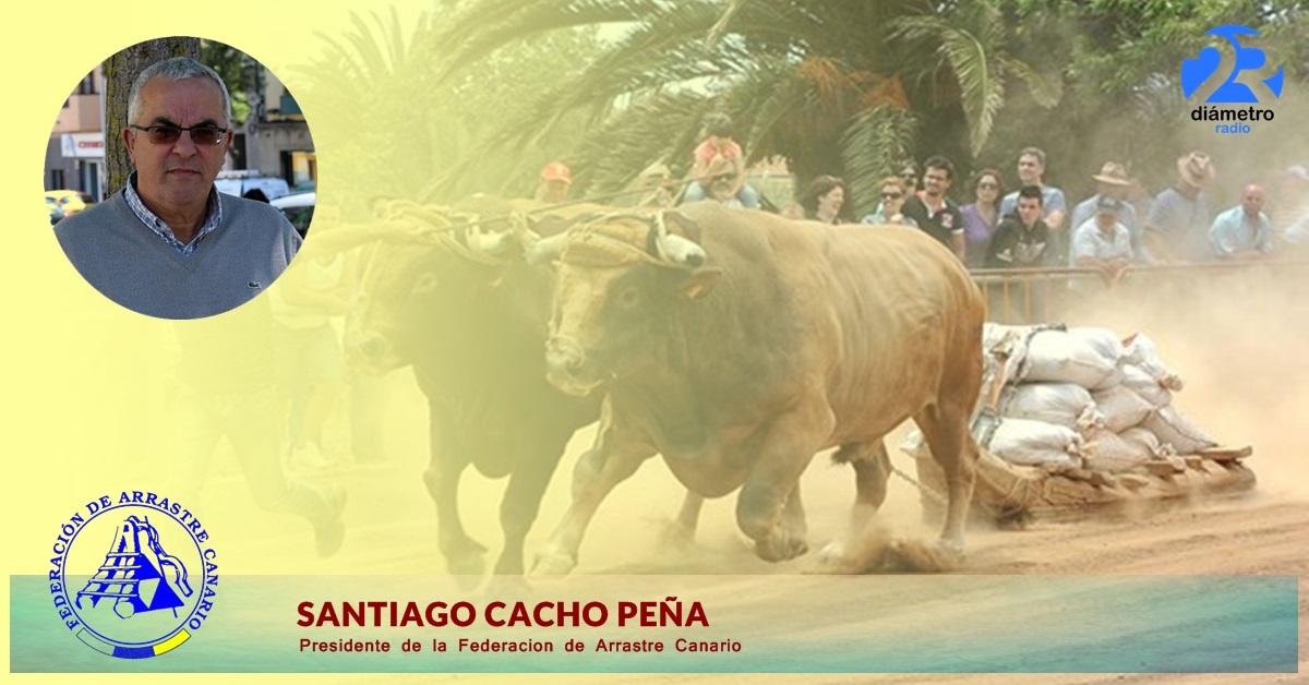 SANTIAGO CACHO PEÑA | Presidente de la Federacion de Arrastre Canario.