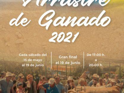 ARRASTRE DE GANADO ISLA DE LA PALMA
